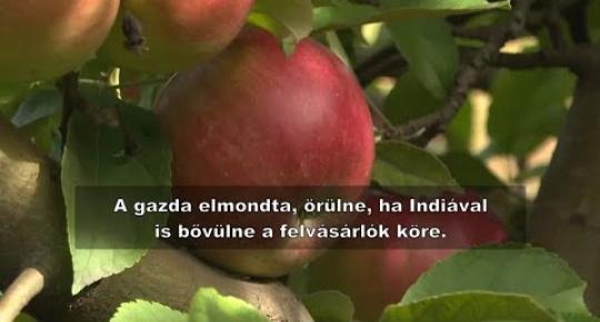 Embedded thumbnail for A hajdújárási alma úton India felé!